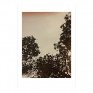 アートポスター「黄昏」 (002)  | GENERAL SUPPLY
