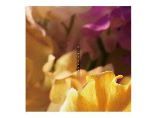 金森浩太 2nd Album「雨上がり、すみれ色」