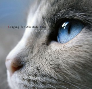 Longing for Absolute Blue/ユキノシタ