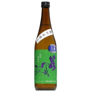 【日本酒】若駒 雄町90 無加圧採り 生 720ml
