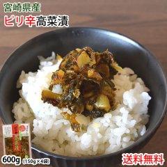 高菜 漬物 辛子たかな漬 きざみ 送料無料 150g×4袋 ポイント消化 お試し 宮崎県産 たかな つけもの