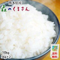 森のくまさん 米 送料無料 10kg 令和2年産 新米 熊本県産 白米 お米 こめ 新米 ひのひかり こしひかり