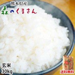 森のくまさん 米 送料無料 玄米 30kg 30年度産新米 熊本県産 お米 こめ 新米 ひのひかり こしひかり