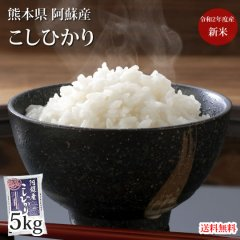 こしひかり 5kg 米 送料無料 熊本県阿蘇産 新米 令和2年産 お米 白米 玄米 ひのひかり 森のくまさん