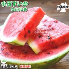 すいか 小玉すいか ひとりじめ 送料無料 秀品2玉 約3kg 熊本県産 西瓜 スイカ