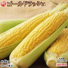 ゴールドラッシュ とうもろこし 送料無料 約4.5kg 11〜14本入り 九州産 味来 極甘フルーツコーン スイートコーン