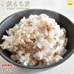 紫もち麦 もち麦 送料無料 750g ポッキリ お試し 熊本県産 ダイシモチ 麦 大麦 むぎ 雑穀 穀米