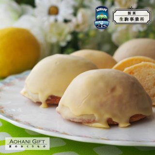 【夏ギフト】レモンケーキ