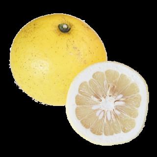 山田さんの大橘(規格:5キロ)