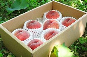 桃【中玉7個】2kg 白根自慢の桃