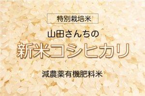 やまださんちの 新米!こしひかり【特別栽培米】 5kg 減農薬有機肥料米
