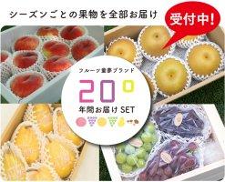 20°シリーズ 年間お届けセットC  「美味しさ炸裂!種類と量が盛り沢山」送料無料