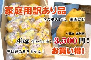 《家庭用訳あり品・お買い得》数量限定! ル レクチエ【10〜14個】4kg  傷ありますが、芳香なかおりと濃厚な甘みは変わりません。
