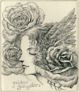 林 由紀子 銅版画蔵書票「眠る薔薇の夢」