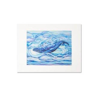 Mystic Blue(マットプリント)11×14