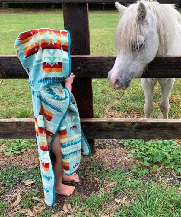 <img class='new_mark_img1' src='//img.shop-pro.jp/img/new/icons1.gif' style='border:none;display:inline;margin:0px;padding:0px;width:auto;' />JACQUARD HOODED TOWEL 24 X 24/AQUA 【PENDLETON OFFICIAL】