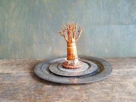 バオバブの木/オブジェ