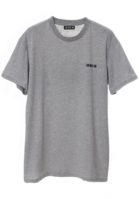 Back Line Logo T-shirt - GRAY