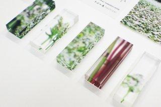 そばの花hashioki 5個セット
