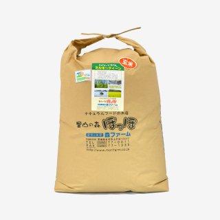 スプリングライス ミルキークィーン(玄米) 30kg