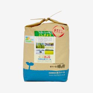 スプリングライス こしひかり(胚芽米) 5kg