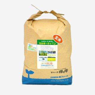 スプリングライス ミルキークィーン(玄米) 10kg