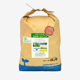 スプリングライス ミルキークィーン(胚芽米) 10kg