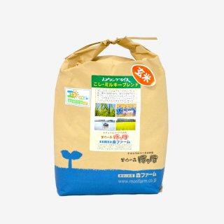 スプリングライス こしひかり・ミルキークィーン ブレンド (玄米) 5kg
