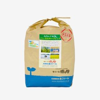 スプリングライス こしひかり・ミルキークィーン ブレンド (胚芽米) 5kg
