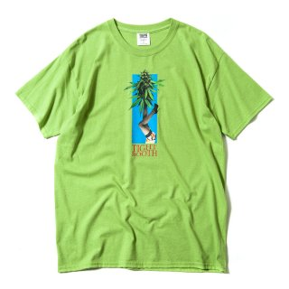 BUDS T-SHIRT / 3 Colors