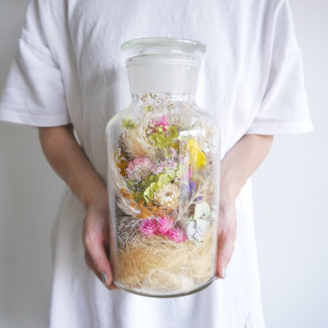 DRY BOTTLE PALM - SMALL