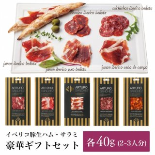 【送料無料】最高級ギフトセット (生ハムとサラミの5種詰め合わせ 各40g) アルトゥーロ・サンチェス