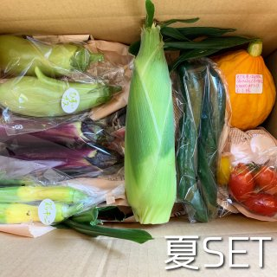 mama-yasaiセット 旬のお野菜セット【数量限定】【レギュラーサイズ】【人気】