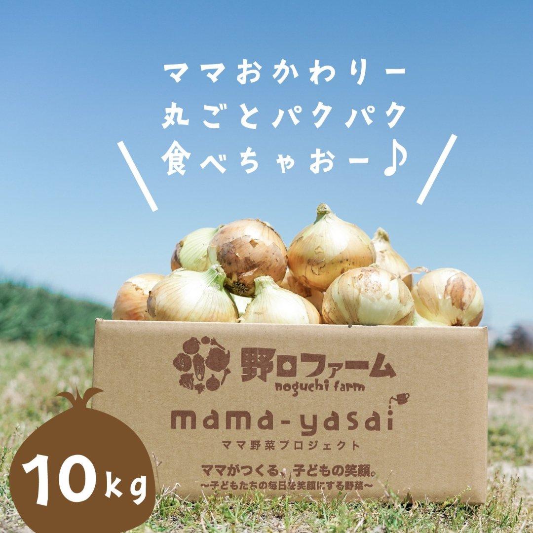 mama-yasai 完熟たまねぎ 10kg 【ブラザーズの元気の源!子どもたちを育てるたまねぎ♪】【6月中旬スタート】【予約受付中】