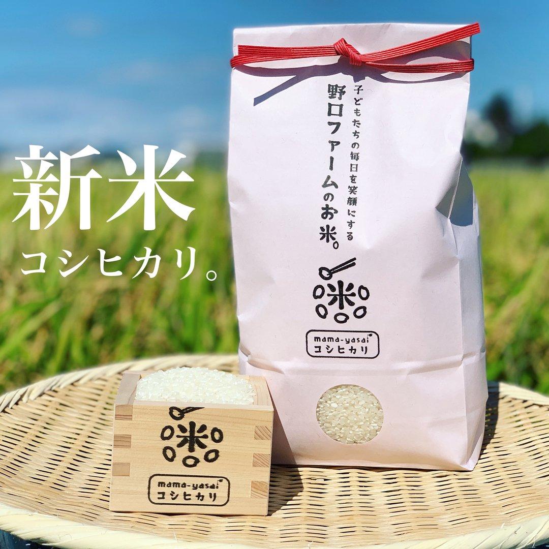 令和元年産 mama-yasai コシヒカリ 5kg 【ブラザーズを魅了する味。オレ、おにぎりがあれば、それでいいわ〜!と言わせたお米】
