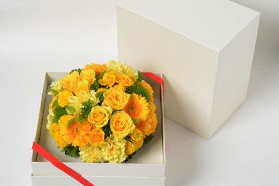 WAKU2[SHIRO]yellow flower