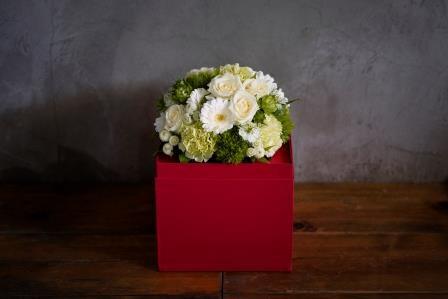 WAKU2[AKA]white flower