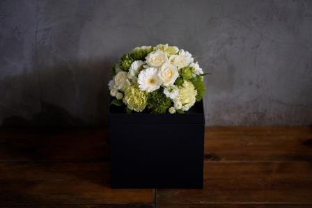 WAKU2[KURO]white flower