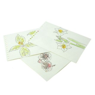 B-TAO+水彩画用紙 20枚