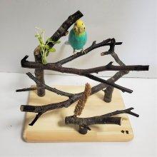 Y字止まり木のアスレチック(白樺)