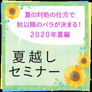 夏越しセミナー【2019年編】