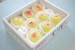 清水白桃 (贈答用)2.5kg