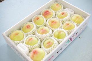 清水白桃(贈答用) 4kg