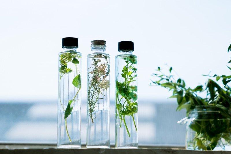 花瓶、ハーバリウム、グリーンコーディネート