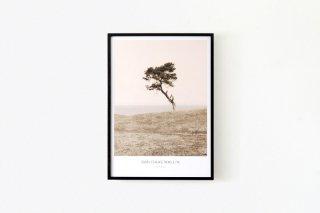 Dan Isaac Wallin / HAVÄNG 700 × 500