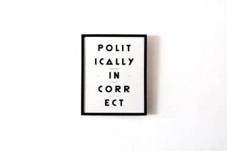 "Polit / Moodpaper "" Politically Incorrect """