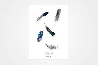 "Annemette Klit / ""Feather"" POSTER_A3"