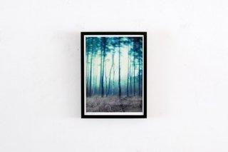 Dan Isaac Wallin / FAIRYLAND -small-