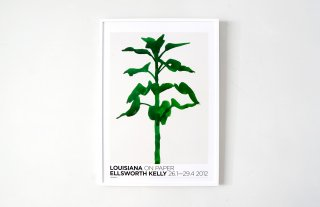 Ellsworth Kelly / Sunflower