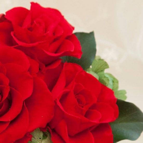 赤いプリザーブドフラワー 小さなアレンジメント キティー(レッド) ※ギフトタイプ3
